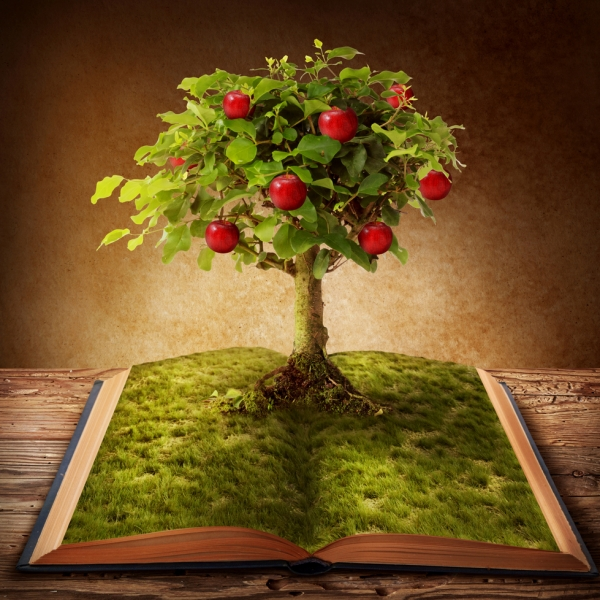 Studijní píle nese ovoce i při studiu strašení